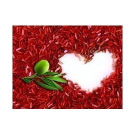 Coeur et Cholestérol